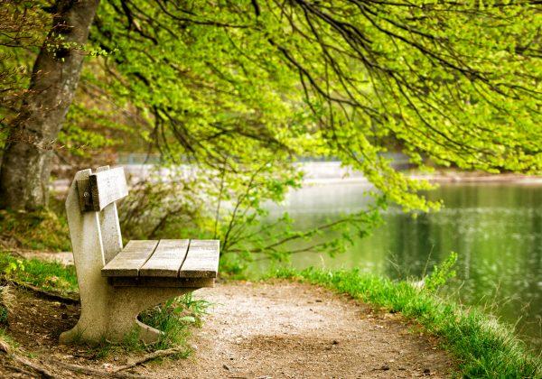 מדיטציית נוכחות – הרגע הזה